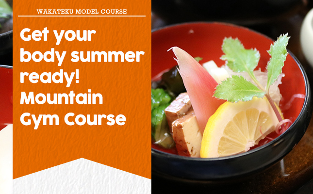 Get your body summer ready! Mountain Gym Course