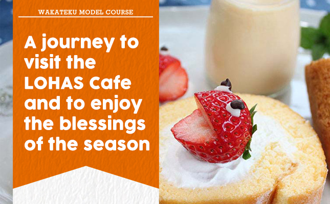 A journey to visit the LOHAS Cafe and to enjoy the blessings of the season