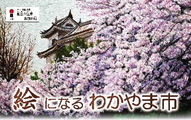 <和歌山市>第8回わかやま名所・旧跡絵画展